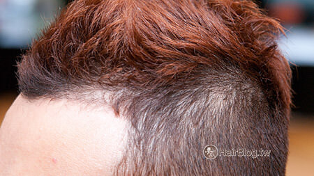 natural-curly-hair-4-category-6
